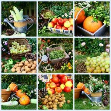 Publicité : à chaque saison ses fruits et légumes !